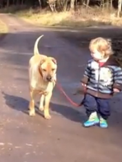 Toddler With Dog